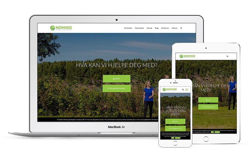 Utvikling av WordPress-sider i Sarpsborg